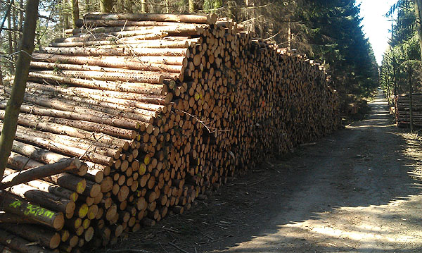 ISN-Holzpolter
